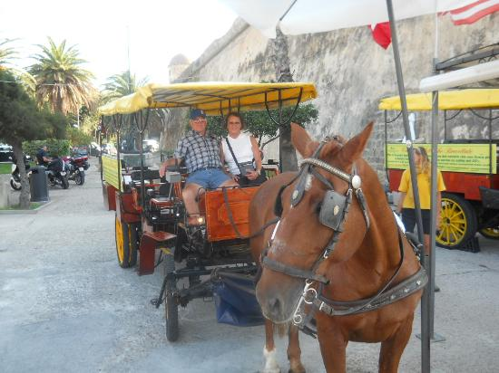 Picale Apartments: horse and buggy ride