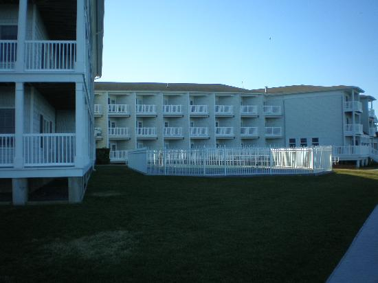 Comfort Suites Chincoteague: Rear