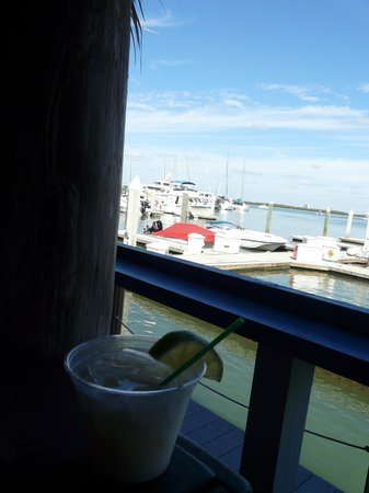 Dolphin Tiki Bar & Grill: Key Lime Pie Martini