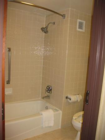 Holiday Inn Express San Antonio Airport: shower