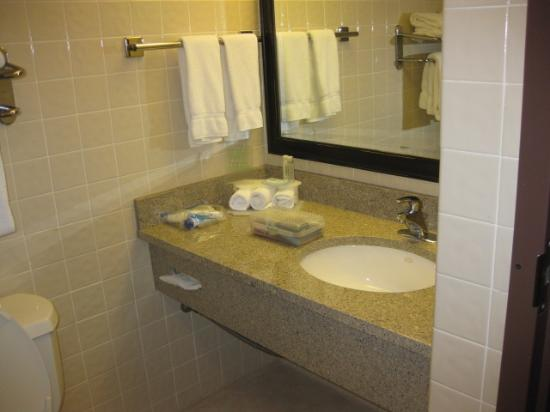 Holiday Inn Express San Antonio Airport : bathroom sink