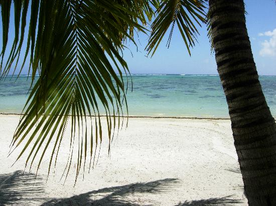 Aretai Beach Villas: View from Patio