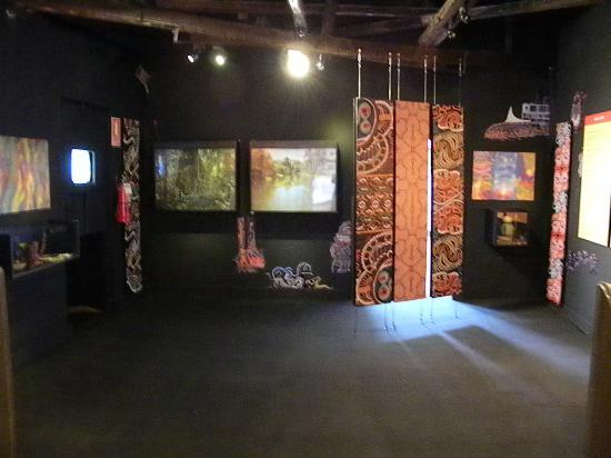 Museo de Plantas Sagradas, Magicas y Medicinales: Ayahuasca hall