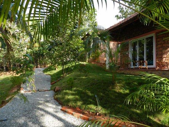 Vishram Village: Bungalow and garden view