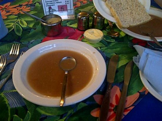 Mount Joy Lodge: The soup.. I only managed one spoon. We went out for dinner elsewhere