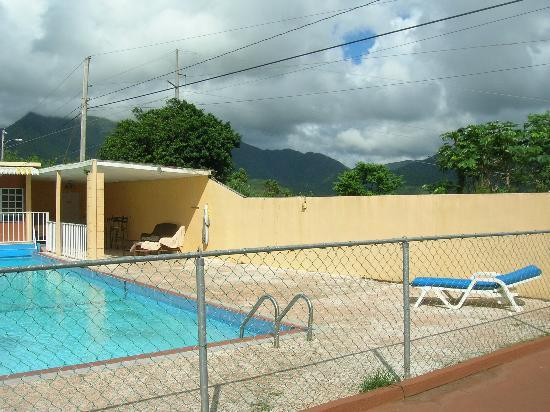 La Paloma Guest House: The pool and mountain view