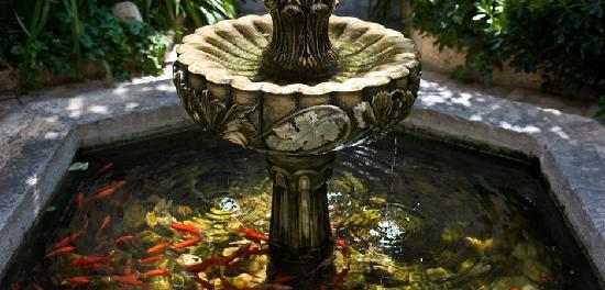 The American Colony Hotel: Courtyard Pond