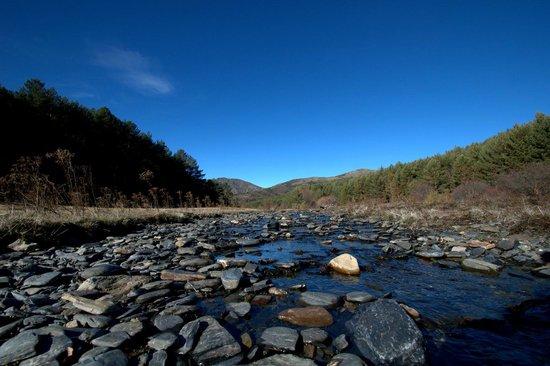 Parque Natural Hayedo de Tejera Negra