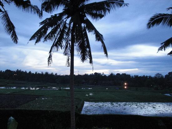 Alam Jiwa: sunrise from balcony