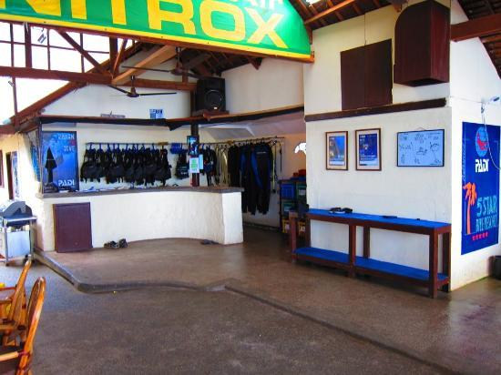 Blue Ribbon Dive Resort: Dive Shop