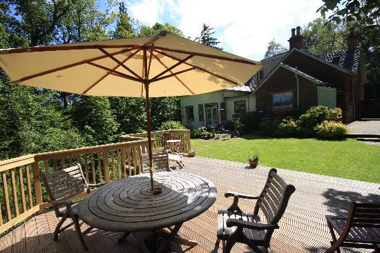 Mulberry Lodge: Garden