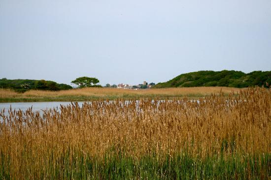Little Idyll: Marshlands at Yarmouth