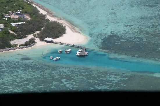Heron Island Resort: paradise 1