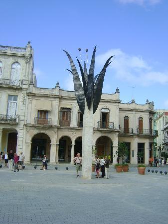 Des De La Cafe Habana