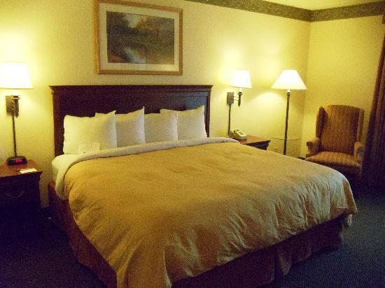 Country Inn & Suites By Carlson, Naperville: Standard King Room