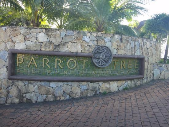 Parrot Tree Beach Resort: Parrot Tree Plantation