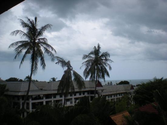 Constanza Boutique Resort: View from the verandah