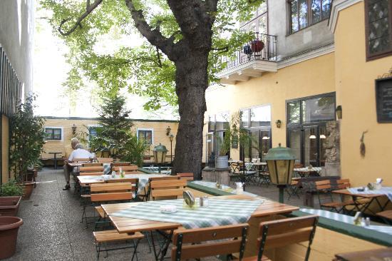 Zum Narrischen Kastanienbaum : Gastgarten