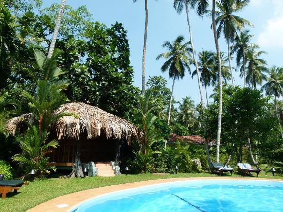 Dalmanuta Gardens - Ayurvedic Resort & Restaurant: Pool Area