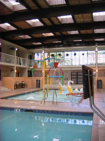 Ramada Hotel Conference Center By Wyndham Plymouth Kids Pool