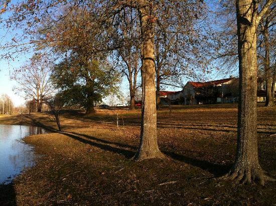 Talco, TX : Late afternoon in January