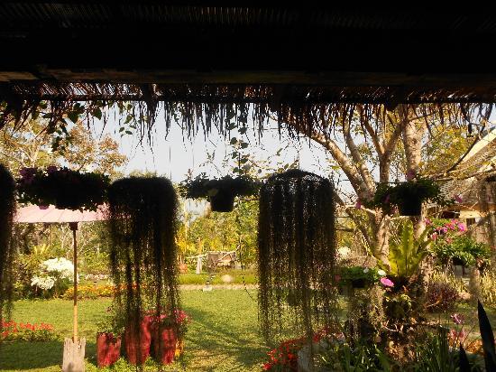 Mae Rim Lagoon : garden of coffee shop a short cycle ride away