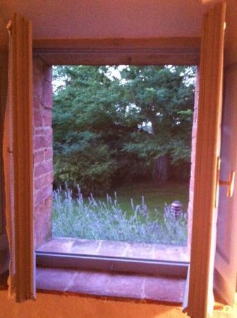 Relais La Saracina: Lavendar - out of bathroom window!