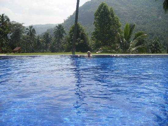 Brook Boutique Hotel & Spa: Relax in the pool with the wonderful view