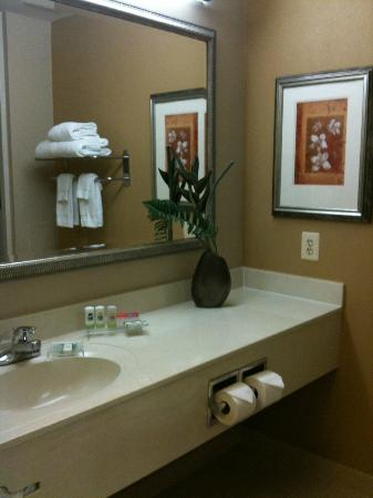 Country Inn & Suites by Radisson, Washington Dulles International Airport, VA: Bathroom