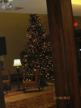 Best Western Plus University Park Inn & Suites: pretty tree in lobby