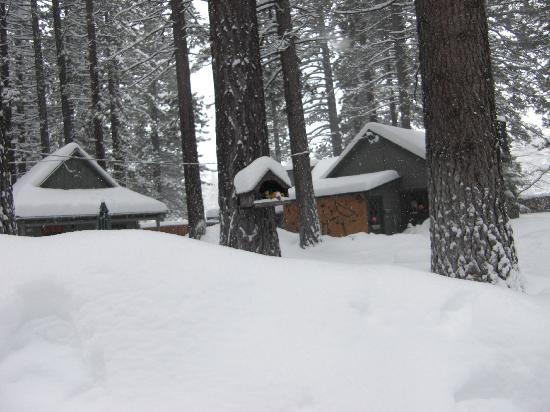 Holly's Place: Winter 2011...lots of snow!!