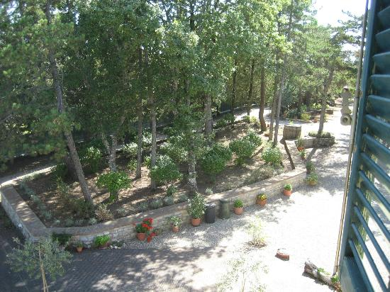 Villa Sant'Uberto Country Inn: garden
