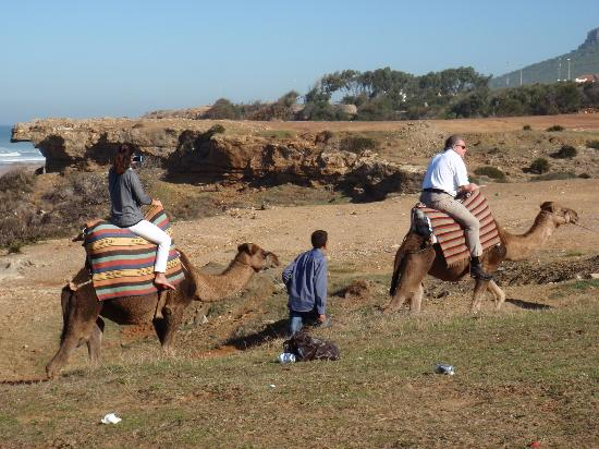 Said Private Day Tours: Camel ride among the beauty and trash