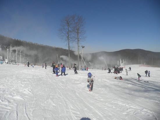 Wintergreen Ski Area