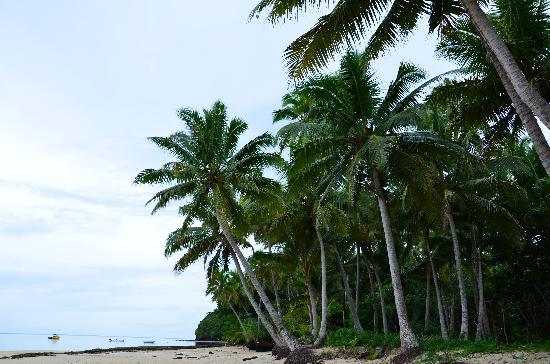 Matanivusi Surf Resort: Private beaches