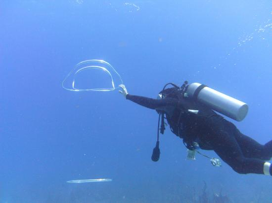 Hugh Parkey's Belize Adventure Lodge: dive mater entertaining - bubble rings