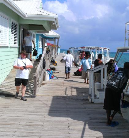 Hugh Parkey's Belize Adventure Lodge Picture