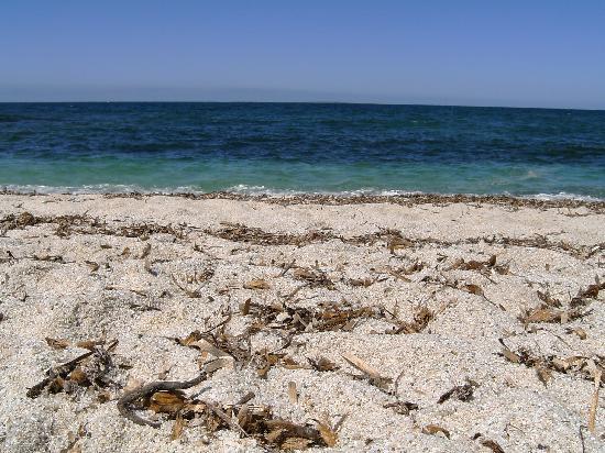 Bed e Breakfast Su Fassoi: una spiaggia della zona