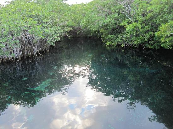 Bel Air Collection Xpu Ha Riviera Maya: Estuary