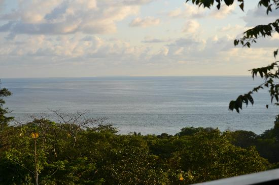 TikiVillas Rainforest Lodge & Spa: View from the room