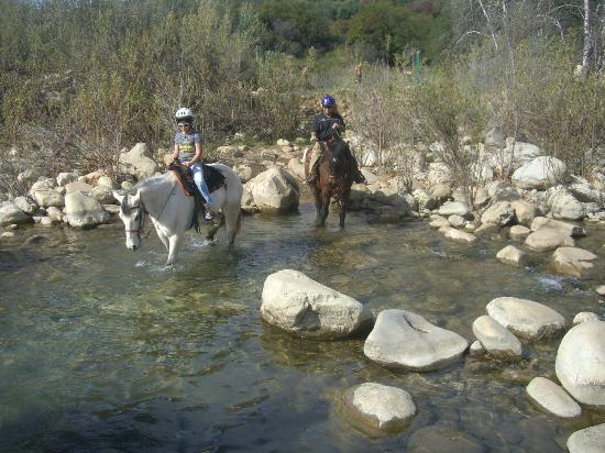 Jan2012 Ojai on Horseback-B
