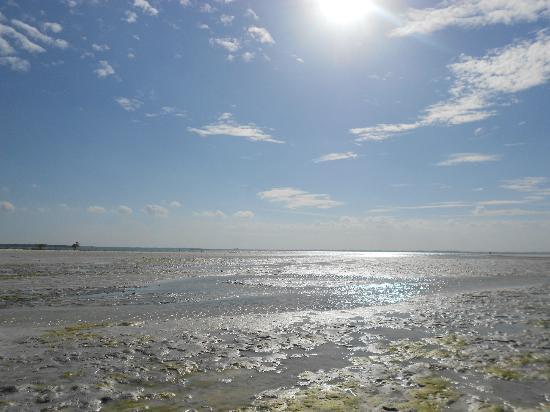Hakuna Majiwe Beach Lodge: Spiaggia di Paje