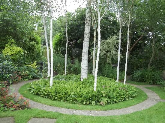 Terra Nova Garden: Circular Beech Coppice
