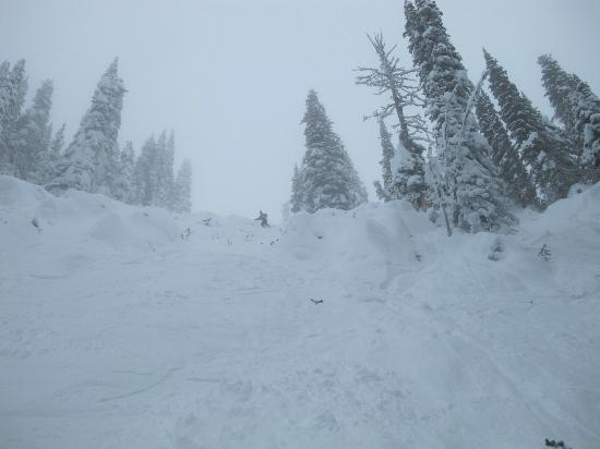 """Brundage Mountain: """"Northwest Passage,"""" a little snow coming down. Only steep spot on the entire mountain. Nobody t"""