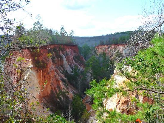 Lumpkin, GA: Providence Canyon