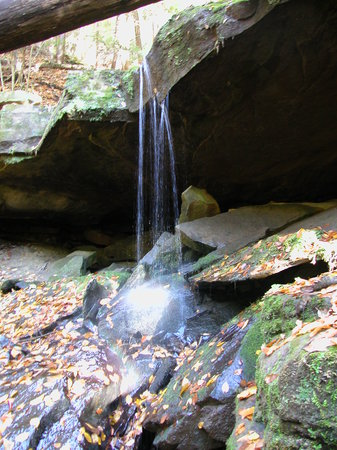 Portersville, PA: One of the many meandering waterfalls