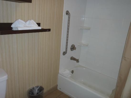 Courtyard by Marriott Nashville Downtown: Bathroom