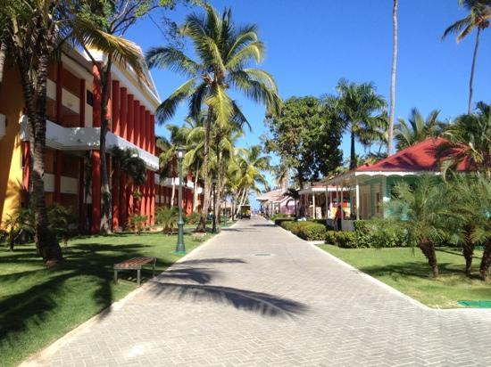 calle caribeńa