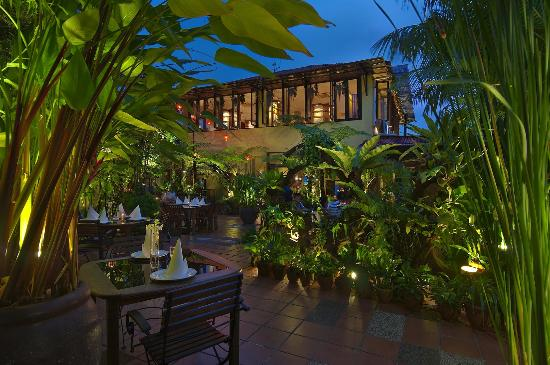 Restraunt Night Dunk Island: Night View Of Ferringhi Garden From Long House