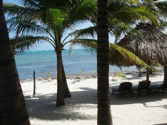 Xanadu Island Resort: View from #10
